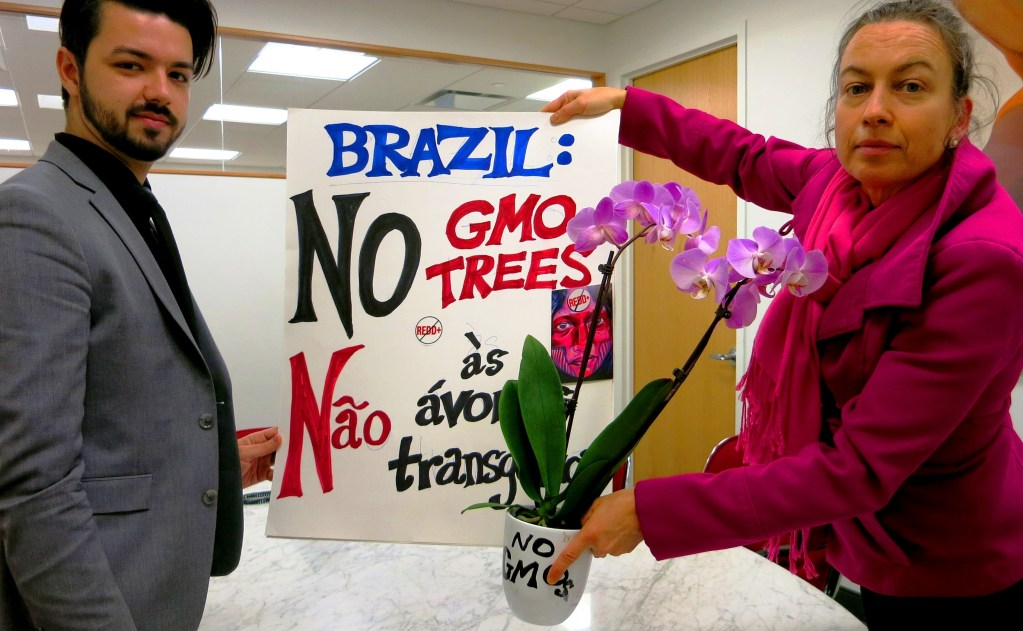 The Emergency Global Day of Action Against GE Trees at the Brazilian Consulate in New York City