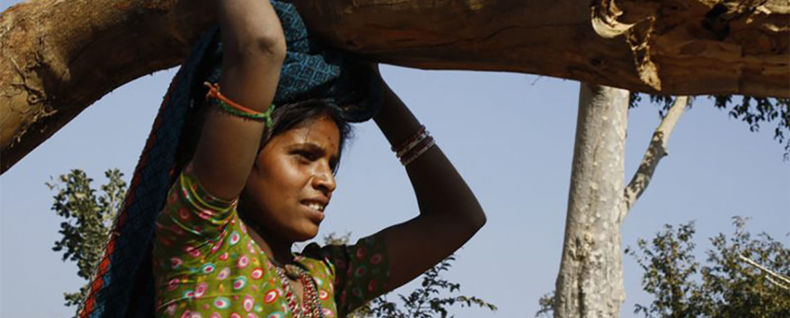 Mindless Deforestation in Jharkhand, India in the Name of Development